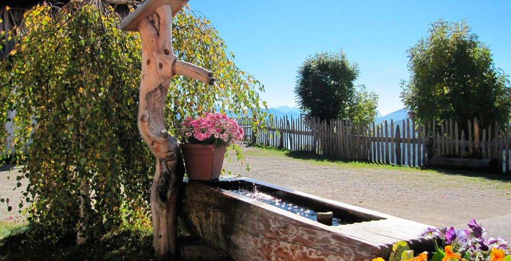 Walderhof in Südtirol - Immer eine Reise wert